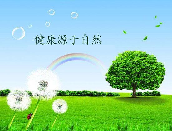 健康环保材料